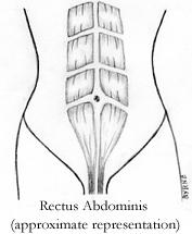Abdominal image 1